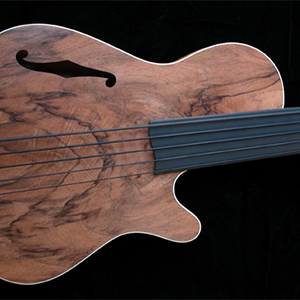 fretless bass guitar gallery pic